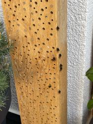 Wildbienenhotel Stamm Eiche XL 100cm