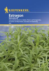 Estragon mehrjährig, Kiepenkerl